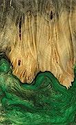Bui - iPhone 7 Plus Wood+Resin Case - Bui (Dark Green, 078038)