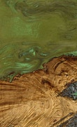 Chiquia - iPhone Xs Max Wood+Resin Case - Chiquia (Dark Green, 067419)