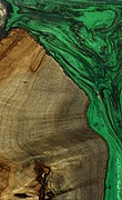 Nill - iPhone 7 Plus Wood+Resin Case - Nill (Dark Green, 078903)