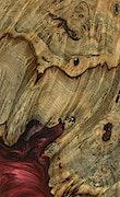 Shivdarsan - Galaxy S9 Wood+Resin Case - Shivdarsan (Dark Red, 079438)