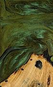 Terri - iPhone Xs Max Wood+Resin Case - Terri (Dark Green, 066153)
